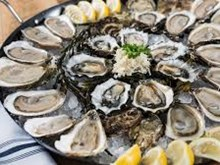 Oyster farms for marinas ?