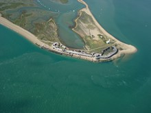 Solent Protection Society - Newsletter Autumn 2019
