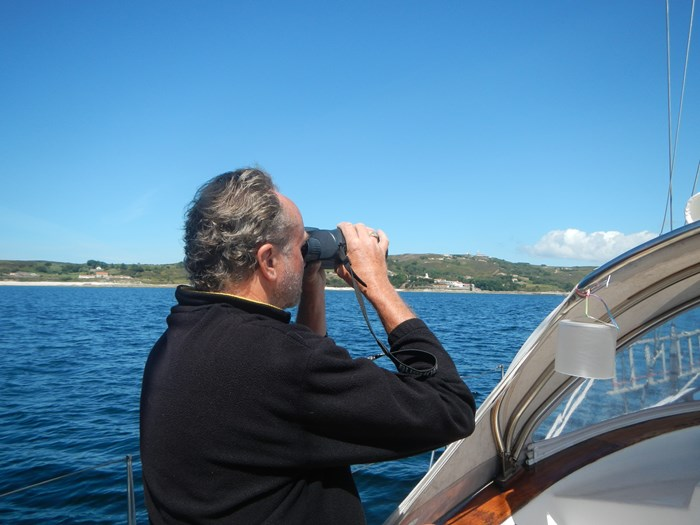 Focus Your Binoculars On Seabirds