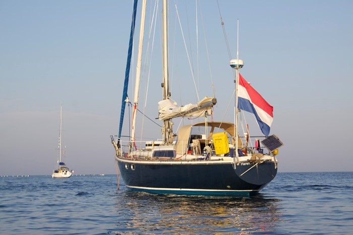 10.44m Victoire - Dutch Rose for sale